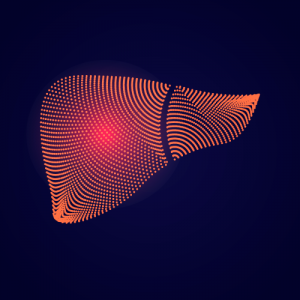 a picture of a fictional liver that is has been damaged with toxins represented by the color red - hepatic detox program.