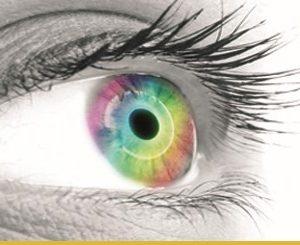 Estudio del iris